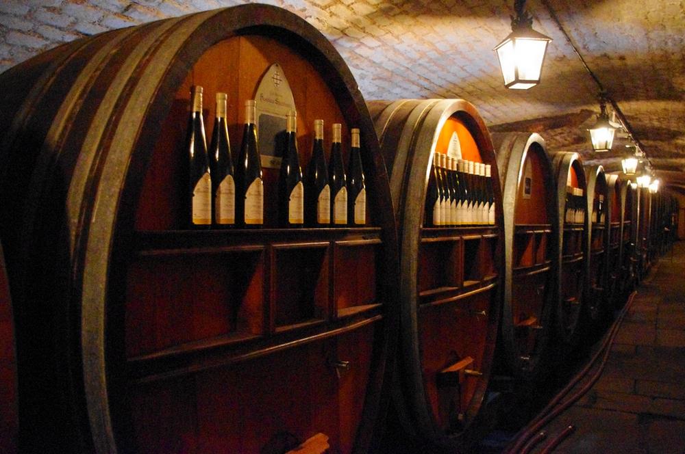 Le plus vieux vin du monde est alsacien
