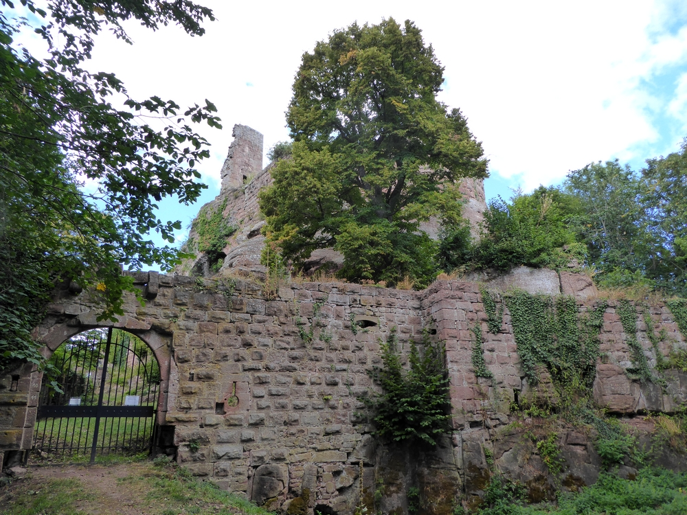 Balade au Guirbaden le plus grand château d'Alsace