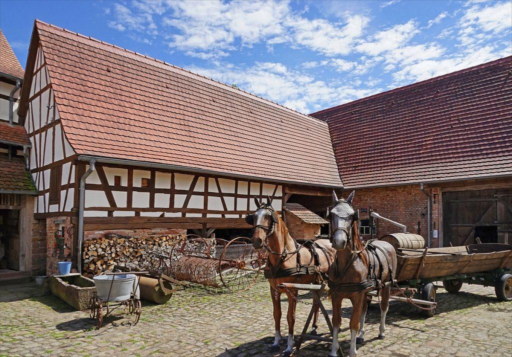 Un voyage dans une ferme alsacienne d'antan