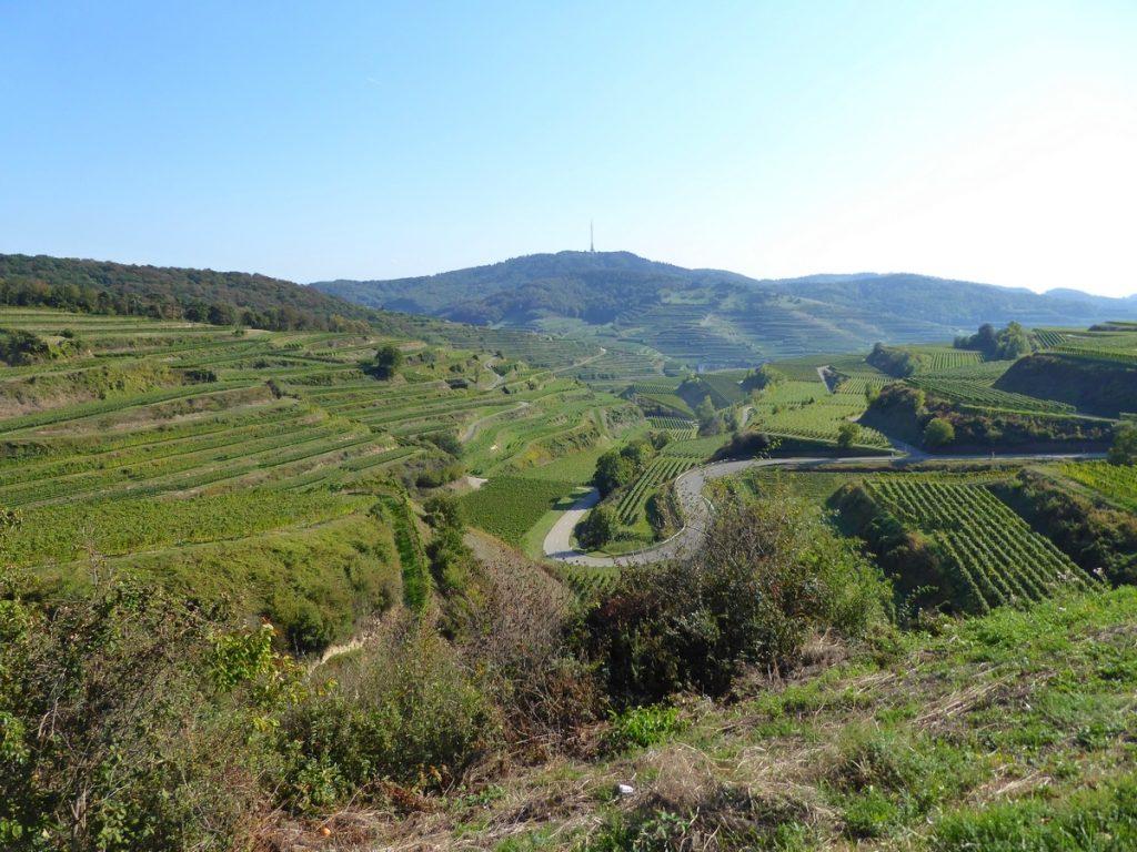 Le Kaiserstuhl, un paradis pour les randonneurs et les motards